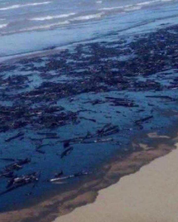 Indignación entre ecologistas por derrame petrolero en Venezuela