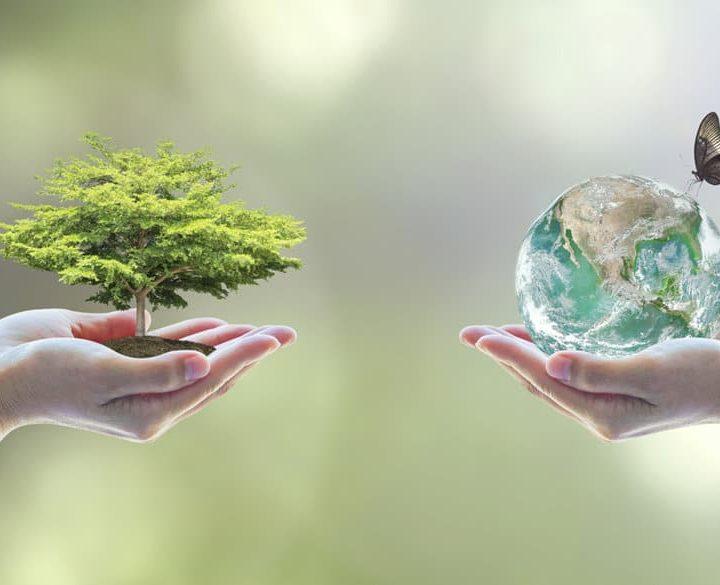 Desarrollo sostenible. Pilares fundamentales
