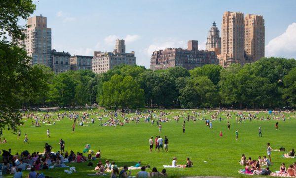 Conoce algunos de los parques más importantes del mundo