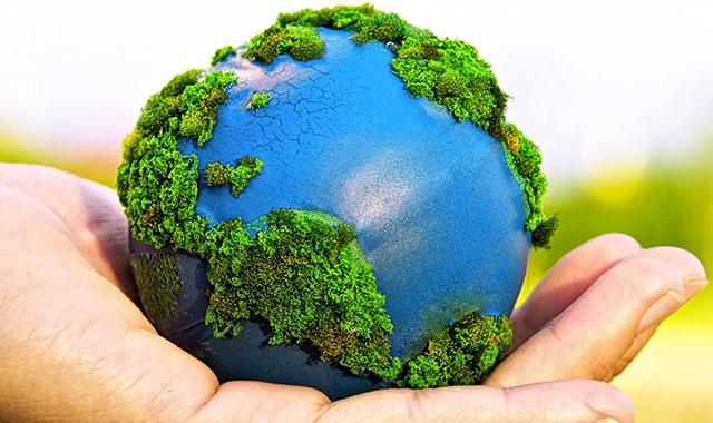 El ecosistema mundial y la importancia de cuidar de él